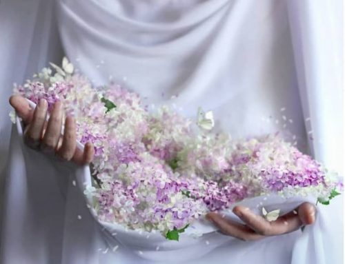 ۴۳ حدیث و روایت پیرامون حجاب و پوشش